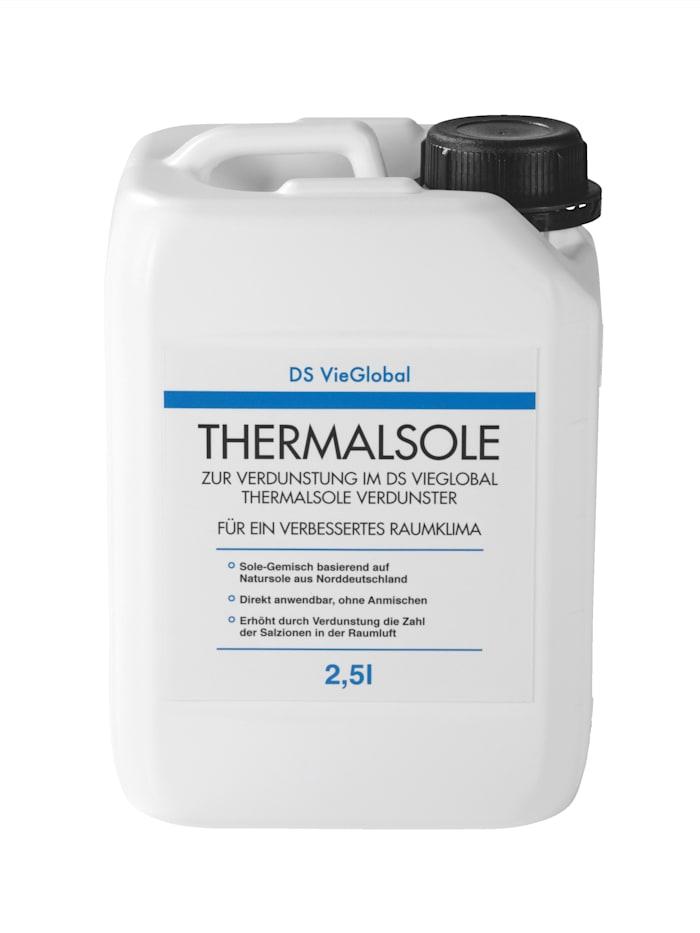 Pekelmengsel op basis van natuurlijke pekel uit Noord-Duitsland DS Produkte Wit