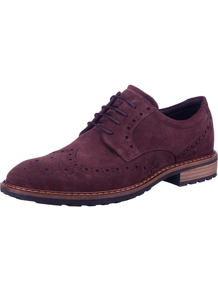 ecco - Business Schuhe  braun