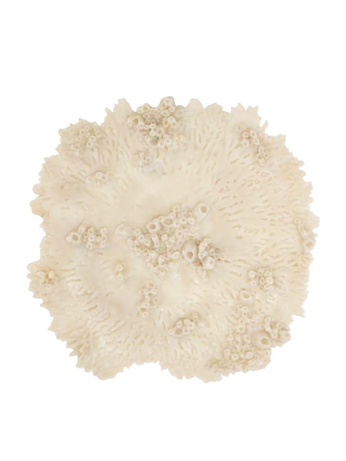 OK: Wand-Deko, Koralle, Impressionen living