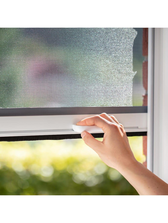 Lichtblick Sonnenschutzsysteme Insektenschutz Fliegengitter Rollo, für  Fenster   Wenz
