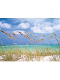 Fototapete 'Ocean Breeze'
