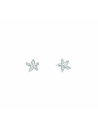 Damen Silberschmuck 925 Silber Ohrringe / Ohrstecker Seestern