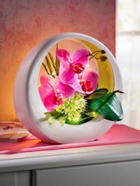 Orkidéarrangemang med LED-belysning