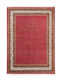 Handknüpfteppich Panipat