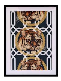 Image, tigre