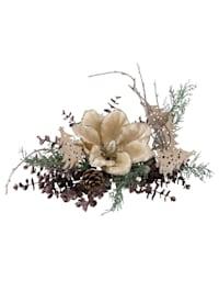 Magnolia-asetelma