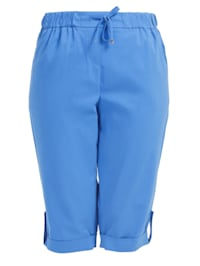 Chinoshorts Shorts