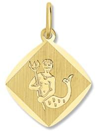 Damen Schmuck Sternzeichen Anhänger Wassermann aus 333 Gelbgold