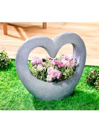 Pflanzenschale Herz