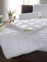 Faser Bettenprogramm mit Aloe Vera