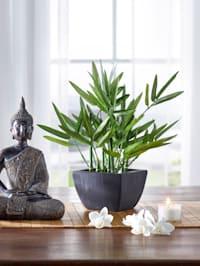 Konstgjord växt – bambu
