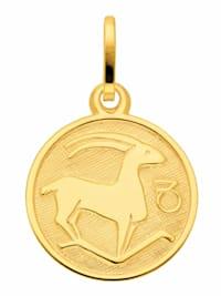 1001 Diamonds Damen & Herren Goldschmuck 333 Gold Sternzeichen Anhänger Steinbock Ø 11,8 mm
