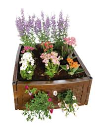 Multifunctionele plantenbak