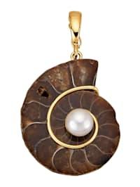 Clip-Anhänger mit Ammonit und Süßwasser-Zuchtperle