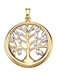 Hänge – livsträd