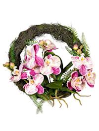 Orchideenkranz, rose