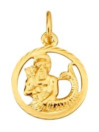 Pendentif Signe du zodiaque Verseau en or jaune 585