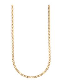 Halsband av pansarlänk