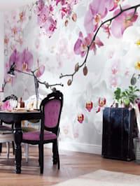 Fototapete 'Orchideen'