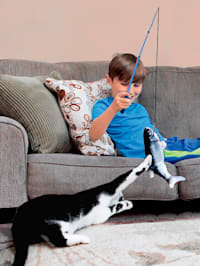 Interaktives Katzenspielzeug 'Flippity Fish'