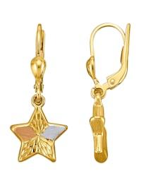 Stern-Ohrringe in Gelbgold 375