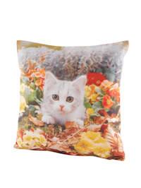 Kuddfodral i 2-pack med söt katt