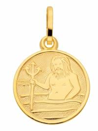 Damen & Herren Goldschmuck 333 Gold Sternzeichen Anhänger Wassermann Ø 11,8 mm