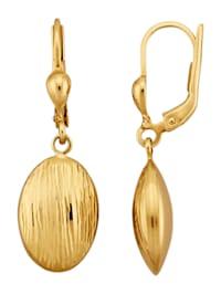 Ohrringe in Gelbgold 375