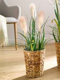 Konstgjord växt, pampasgräs
