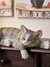 Kantenhocker Katze
