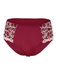 Briefs with semi-sheer embroidered panels