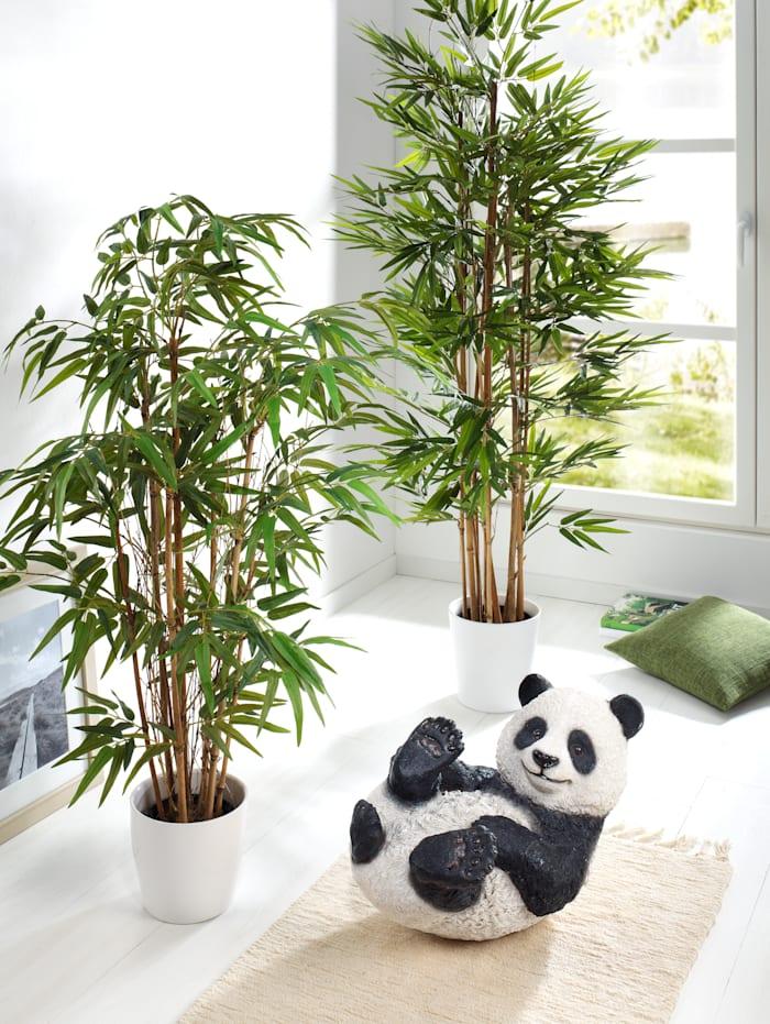 Globen Lighting Bambus, Grün