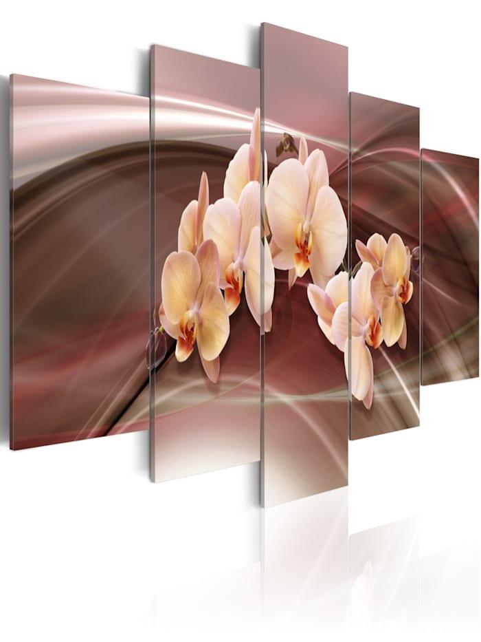 artgeist Wandbild Orchideenblüte auf schwingendem Hintergrund, brown,cream,pink,white