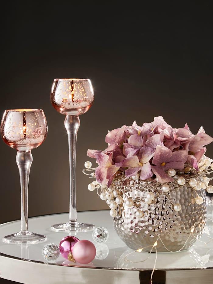 Hortensie in Vase