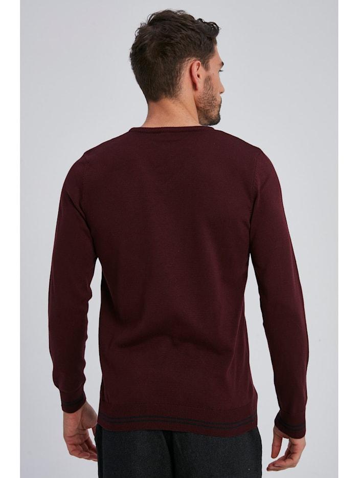 Pullover Darey mit V-Ausschnitt