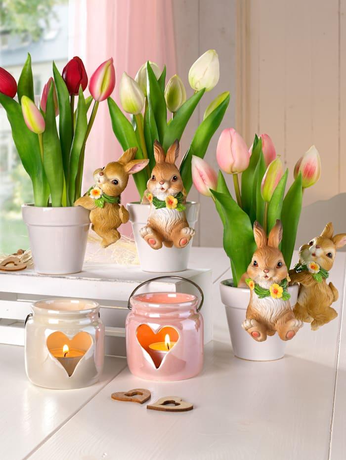 Gasper Tulpen im Keramiktopf, Weiß