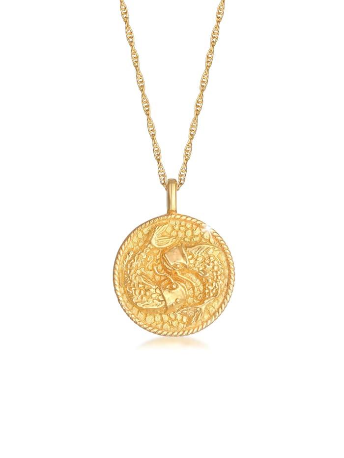 Elli Halskette Sternzeichen Fisch Astro Münze 925 Silber, Gold