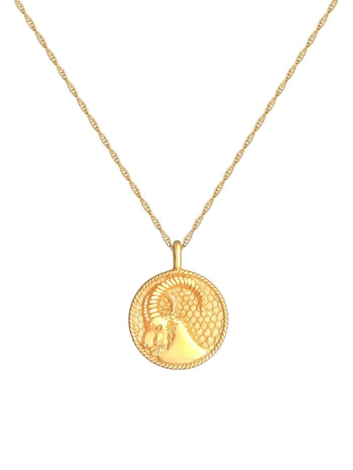 Halskette Sternzeichen Steinbock Münze 925 Silber