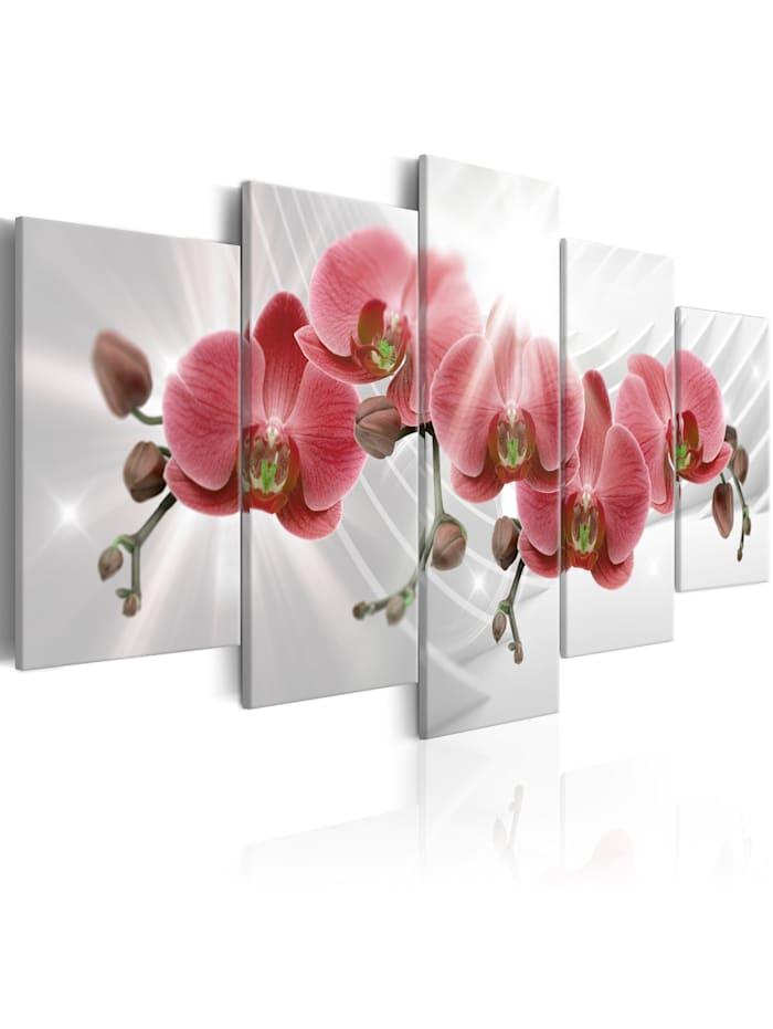artgeist Wandbild Abstract Garden: Red Orchis, Rot,Weiß,Grau