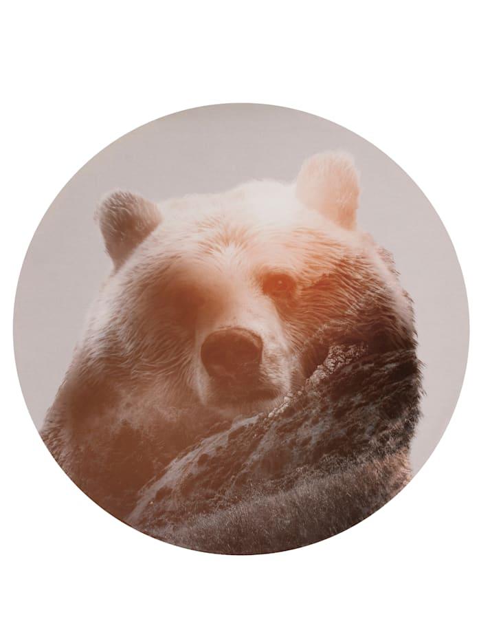 Komar Runde Fototapete, Bär, grau
