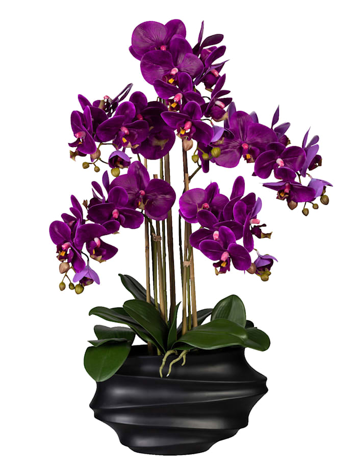 Globen Lighting Orchidee in schwarzer Vase, Lila
