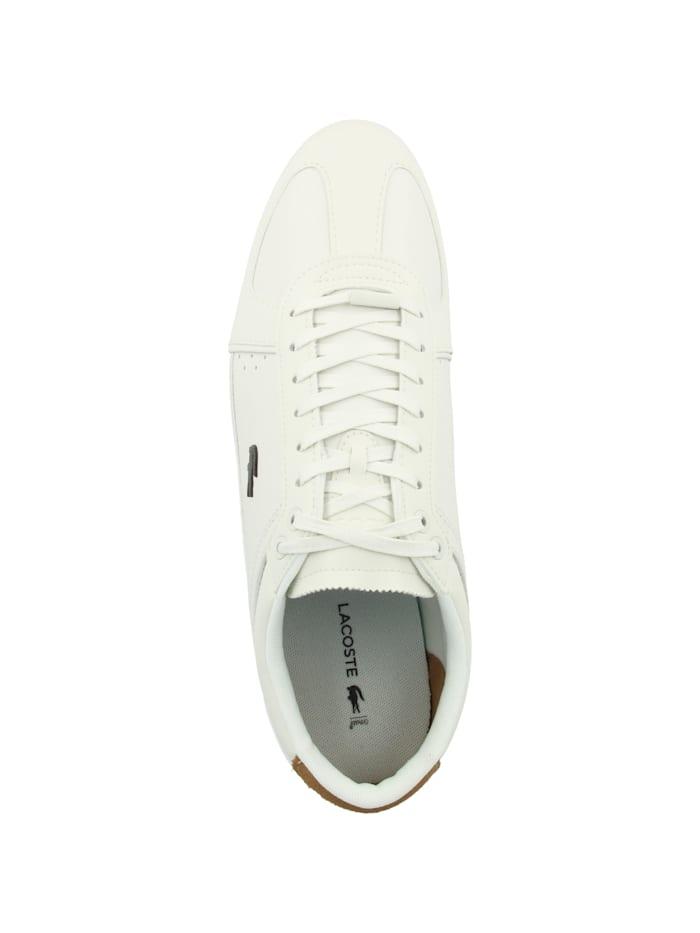 Sneaker low EVARA 319 1
