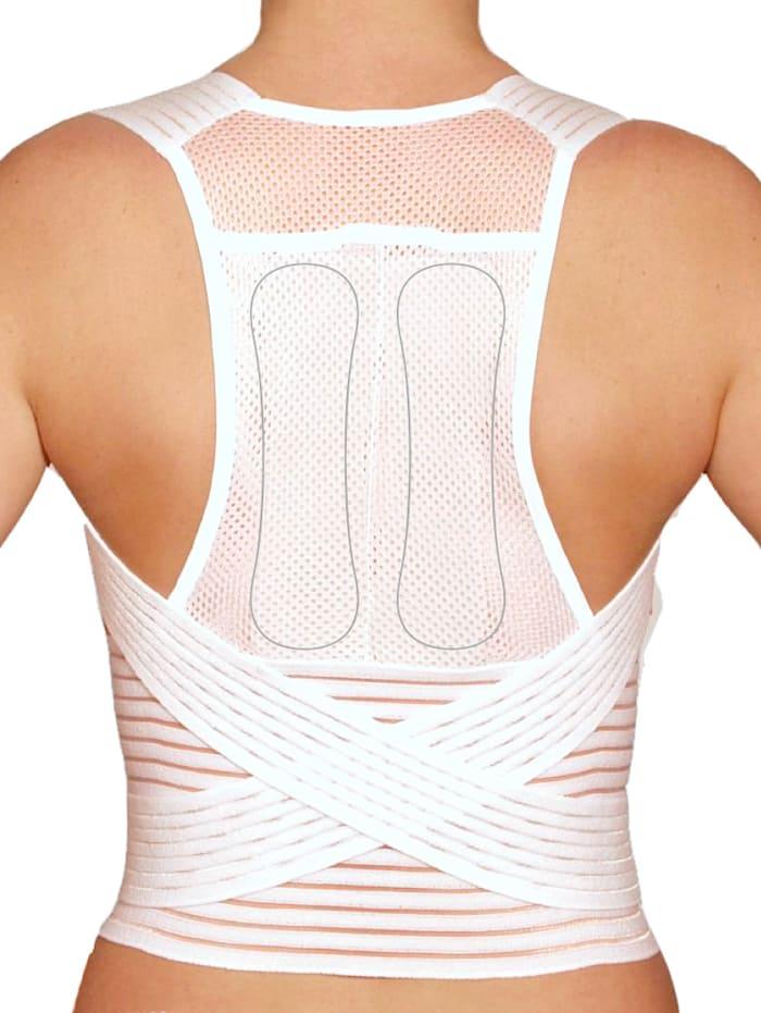 Rücken- und Taillenstützgürtel