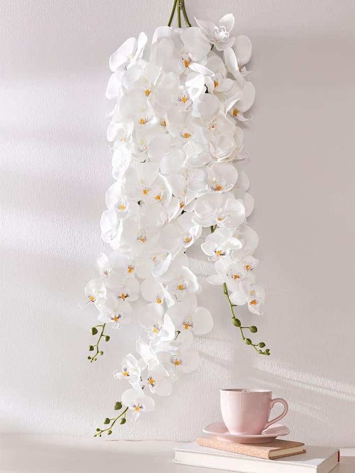 Globen Lighting Orchideeëntak, Wit