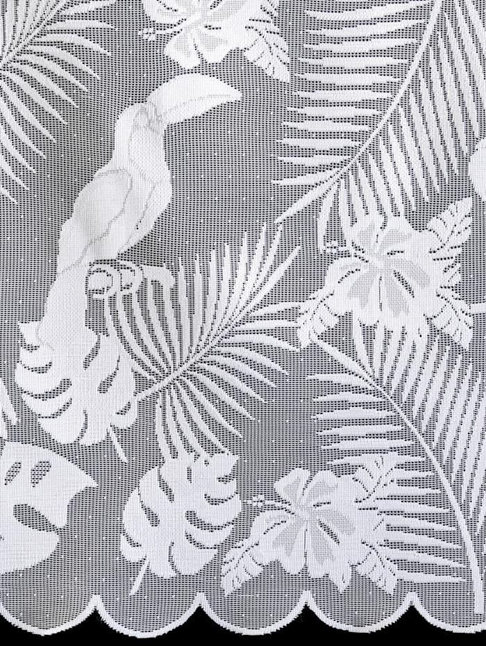 2-delige vitrageset Papugi