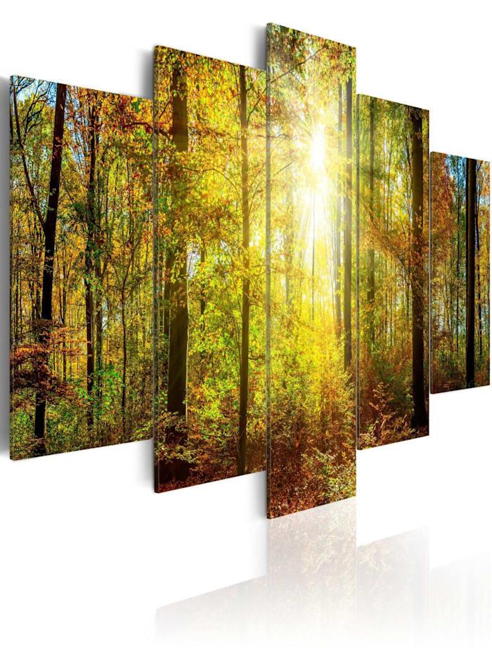 artgeist Wandbild Mystical Forest, Braun,Grün,Gelb
