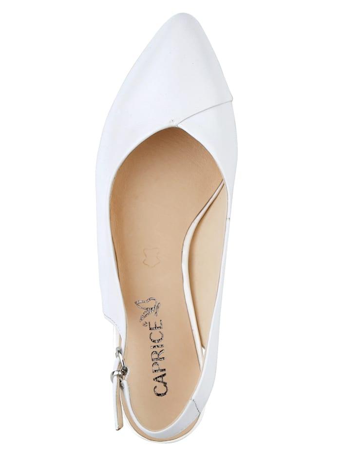 Sling with elegantpointy toe