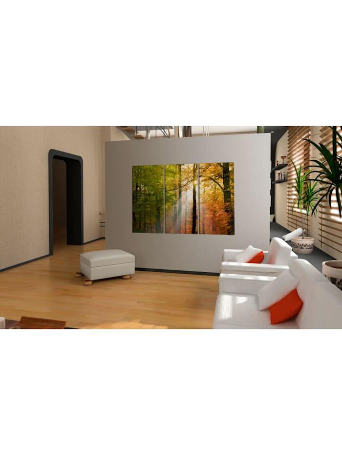 Wandbild Freundlicher Herbstwald