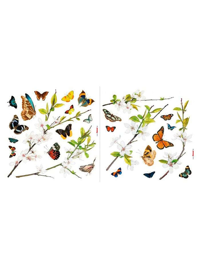 Komar Window-Sticker, multicolor