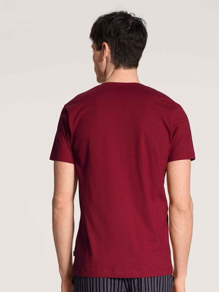 T-Shirt, V-Neck STANDARD 100 by OEKO-TEX zertifiziert